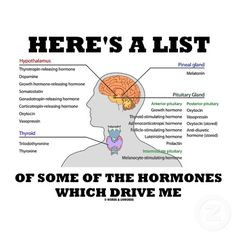 Physiology: hormones More
