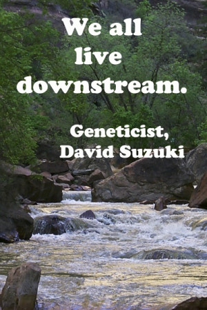 We all live downstream.