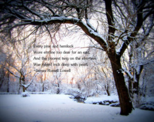 ... in forest - winter woods - with quote - original nature photography