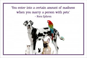 quotes about pet euthanasia