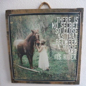 Girl And Her Horse Quotes