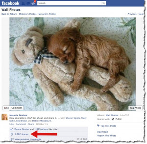 Ways To Craft Your Facebook Posts For Maximum Shares