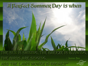 ... Quotes About Summer: Summer Quotes And The Picture Of The Green Grass