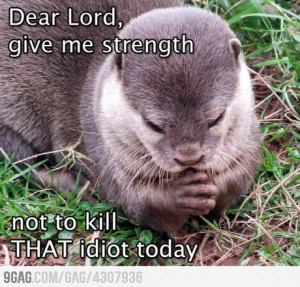 funny dear otter dear Lord give me the strength not to kill this idiot ...
