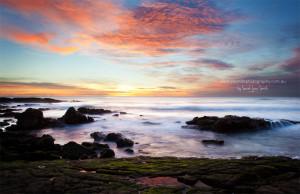 Good Morning Cold Good Morning Sunshine Coast