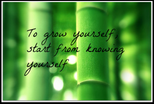 Personal growth and development Tips