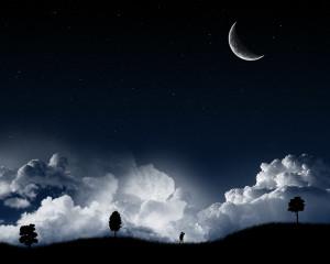 Dark Stary Night