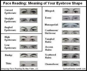 face reading what your eyebrow shape means eyebrows your mental ...
