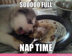 SOOOOO FULL, NAP TIME