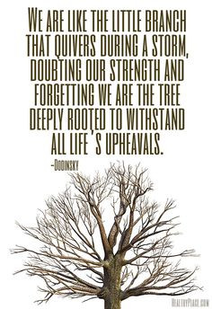 ... strength and forgetting we are the tree deeply rooted to withstand all
