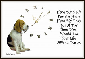 My Beagle Smiles ... My Poems ... My Quotes