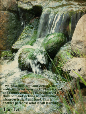 quotes/lao-tzu-quote-be-careful-what-you-water-your-dreams-with-water ...