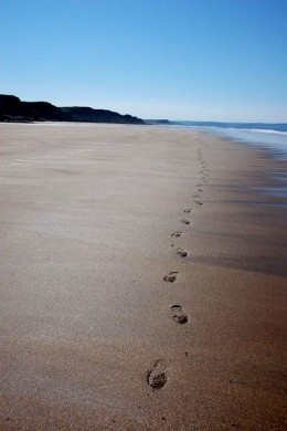 Wikimedia Footprints in the Sand by Philip Halling