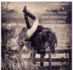 Falling Off Your Horse Quotes