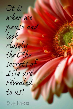 The secrets of life #quotes
