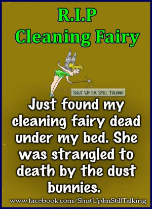 Cleaning Fairy...♡