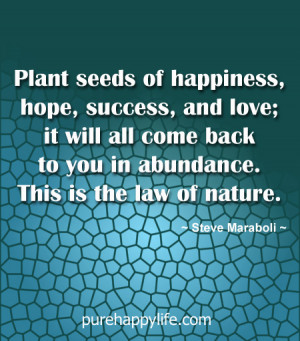 Plant Seeds of Love Quotes
