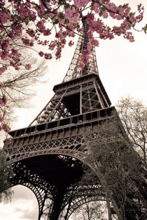 eiffel tower, love, paris