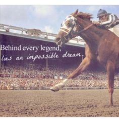 My impossible dream? To show jump in the Olympics. To have the most ...