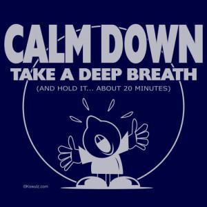 Calm Down T
