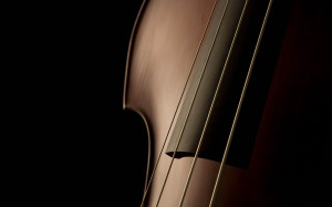 Double Bass