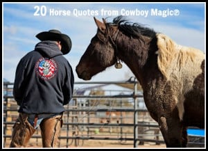 20 Horse Quotes from Cowboy Magic®