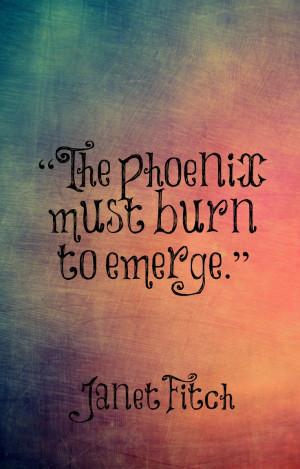 must burn to emerge....