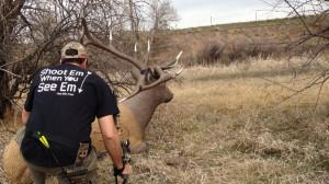 deer hunting sayings