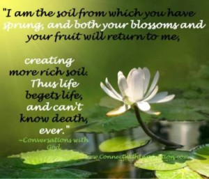 Dying, Inspirational Quote, Life can not know death ever, Lotus flower ...