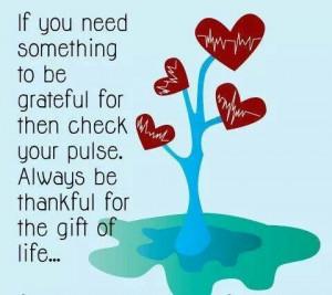 Gratitude for life