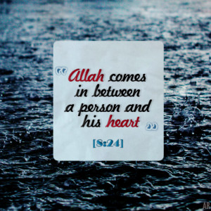 islamic-quotes: O you who have believed, respond to Allah and to the ...