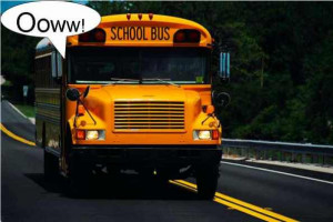 School Bus Quotes Any Book