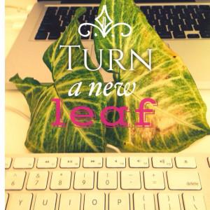 Turn a new leaf in life.