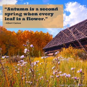 Autumn is a second spring when every leaf is a flower2.""
