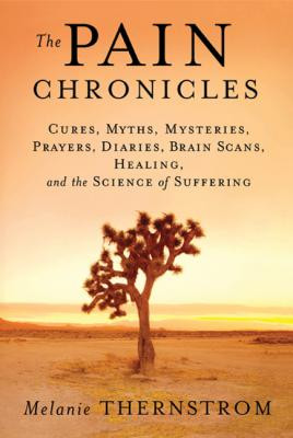 """Dealing with Chronic Pain: Melanie Thernstrom's """"The Pain ..."""