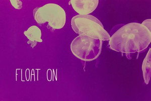 Float On Jellyfish Art Quote Print 5x7 Beach by TheStrangeBird, $12.00