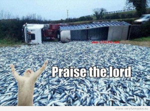 Funny Picture - Cat and a fish incident