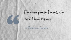 the more people i meet the more i love my dog Dog Quotes Love