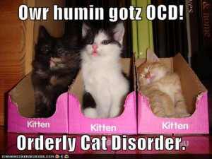funny ocd pictures, crazy cat lady