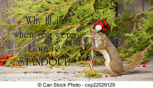 Stock Photo - Inspirational quote on individuality by Dr. Suess with a ...