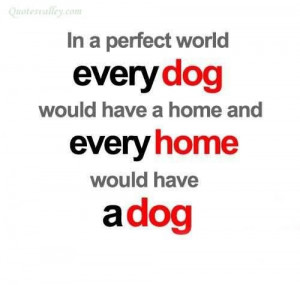 In a perfect world every dog would have a home quote