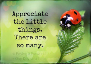 ... , Ladybugs, Lady Beetles, Ladybeetle, Lady Bugs, Pictures Quotes