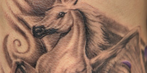 More Information On pegasus horse tattoo