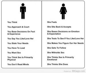 Men vs Women - Human Brain Analysis (Must Read)