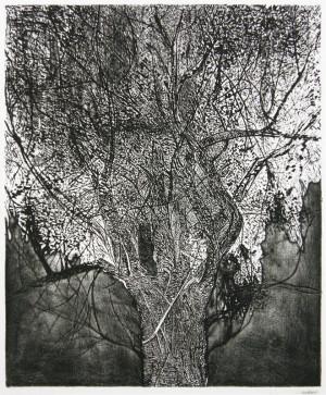 The Great Tree Leonard Baskin