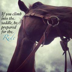 ... quotes things horses horses stuff horses quotes horses life 1 1
