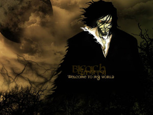 Download the Bleach anime wallpaper titled: 'Zangetsu'.