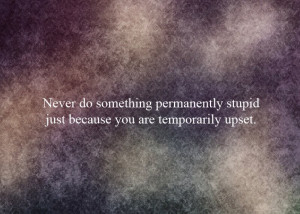 ... Stupid Just because You are temporarily Upset ~ Emotion Quote