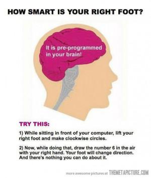 funny brain trick right foot six