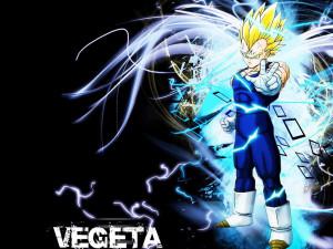 Prince Vegeta Vegeta